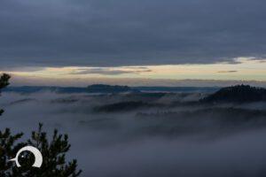 Elbsandsteingebirge-027