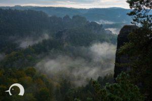 Elbsandsteingebirge-028